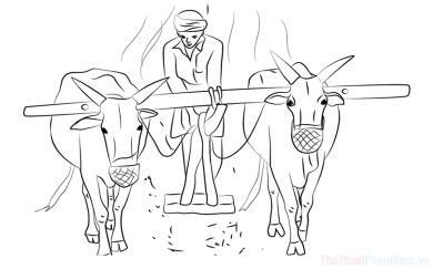 Tranh tô màu nghề nông, hình đẹp về bác nông dân