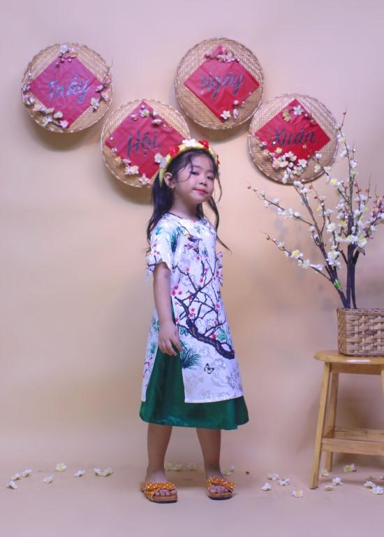 Bộ áo dài cảnh sắc mùa xuân