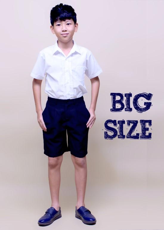 Áo học sinh xếp li big size